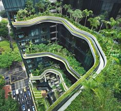 The jungle of palms and tree ferns that clings to Singapore's Park Royal on Pickering hotel