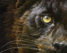 Panther Print featuring the painting Eye Of The Panther by Lucie Bilodeau