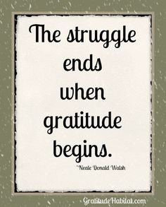 Comment: What are you grateful for today?