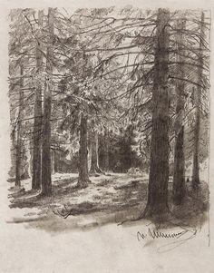 Ели, освещенные солнцем. 1880-е 29,7х23,3