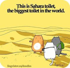 The Cats Were Thoroughly Enjoying Their World Toilet Tour - LOLcats is the best place to find and submit funny cat memes and other silly cat materials to share with the world. We find the funny cats that make you LOL so that you don't have to. Funny Shit, Funny Cute, The Funny, Funny Memes, Funny Stuff, Hilarious Jokes, Cat Memes, Funny Things, Crazy Cat Lady