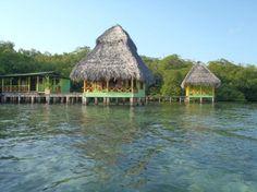 Coral Cay Cabins (Panama/Isla Bastimentos, Bocas del Toro) - Campground Reviews - TripAdvisor