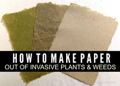 How To Make Paper From Invasive Plants | Make paper by using weeds or plants that have invaded your yard.