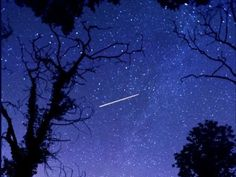 The Perseids meteor shower is set to light up the skies above South Yorkshire this week august 10 2015