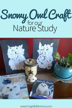 Join us in learning about a little about snow owls, but also make a cute little snowy owl to decorate the front of your refrigerator too. This was our first nature study but not our last! Holiday Crafts For Kids, Fall Crafts, Diy And Crafts, Owl Crafts Preschool, Kids Crafts, Diy Bird Feeder, Nature Study, Snowy Owl, Mothers Day Crafts