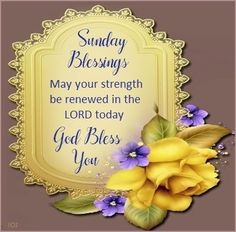Have a Blessed day! Blessed Sunday Morning, Sunday Morning Quotes, Sunday Prayer, Have A Blessed Sunday, Happy Sunday Quotes, Sunday Love, Morning Greetings Quotes, Morning Blessings, Good Morning Messages