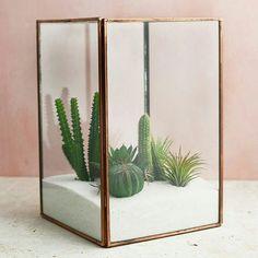 Rectangular Geometric Open Fern Moss Succulent Plants Glass Terrarium Planter Pot Box for Christmas Present