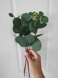 Eucalyptus Centerpiece, Centerpieces, Plant Leaves, Plants, Center Pieces, Flora, Table Centerpieces, Plant, Centerpiece