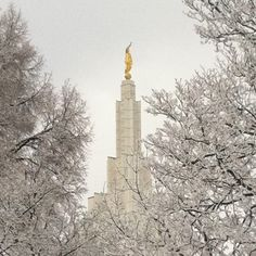 Idaho Falls Temple. A visit to BYUI in January