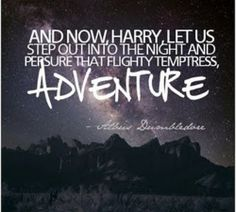 yes! That flighty temptress, adventure.