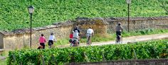 En Bourgogne   www.bourgogne-tourisme-pro.com - le site pro du tourisme en Bourgogne
