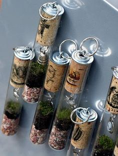 magnetic test tube terrarium made with Recycled wine corks!   #corks