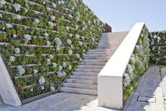 Vertical garden covers what could have been a very stark but necessary landscape element.