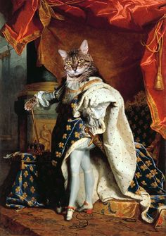 King Louis XIV of France - Custom Renaissance Pet/Dog/Cat Portrait - Digital personalized pet portrait painting using your Photo