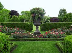Urns are planted with roses, geraniums, bacopa, and ivy, imbuing the grounds with a certain air of classicism.