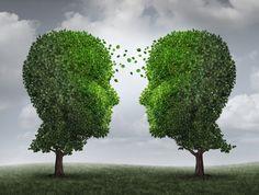 Les arbres se parlent-ils?