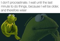 I don't procrastinate. I wait until the last minute to do things, because I will be older and therefore wiser.
