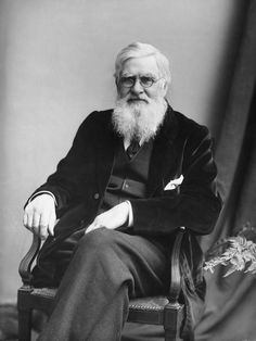He Helped Discover Evolution, And Then Became Extinct  Ask most folks who came up with the theory of evolution, and theyll tell you it was Charles Darwin.  In fact, Alfred Russel Wallace, another British naturalist, was a co-discoverer of the theory — though Darwin has gotten most of the credit. Wallace died 100 years ago this year.