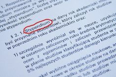 Student scholarships in Poland   Link to Poland