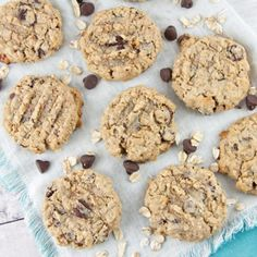 Lactation Cookies (Oatmeal Chocolate Chip) | Bunsen Burner Bakery
