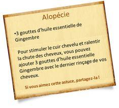 alopécie gingembre