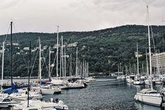 Miramare Castle near Trieste Trieste, New York Skyline, Castle, Travel, Italia, Viajes, Trips, Traveling, Forts