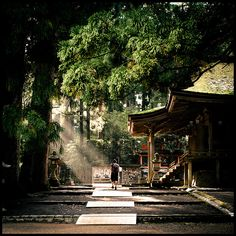 Koyasan, Japan - My parent's say they're going to travel Asia for three months and I'm not invited.