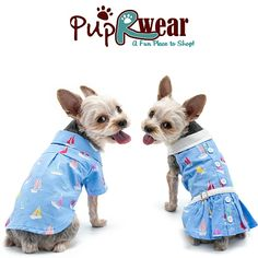 A trip to the seaside needs the ultimate outfit. Deck your dogs out in this summer wear. Cute Dog Clothes, Small Dog Clothes, Nautical Outfits, Pet Pigs, Online Pet Supplies, Dog Beach, Boy Dog, Dog Bows, Dog Costumes