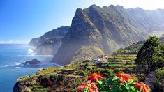 Gemeinsam auf die Blumeninsel Madeira   via TZ.de  9/08/2014 Blumenparadies im Atlantik: Madeira ist ein botanischer Mikrokosmos, Pflanzen-Einwanderer aus der ganzen Welt sind hier heimisch geworden. #Portugal