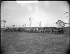 The car line up at the Katanning Show, 29 October 1913 Wa Gov, Concert, Pictures, Outdoor, Image, Photos, Outdoors, Recital, Festivals
