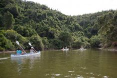 Shipwreck Hiking and Canoe Trails | Slackpacking | Port Alfred - Dirty Boots River Mouth, Nocturnal Birds, Knysna, Game Reserve, The Dunes, Shipwreck, Sunshine Coast, Hiking Trails, Canoe
