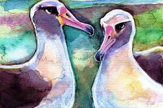 Albatross Pair Watercolor Painting Print, Artist-Signed. Copyright Teri Kman.