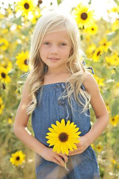 Sunflower field pictures are a MUST