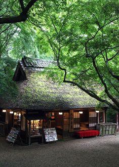 Nara City Mizutani Chaya frisches grünes Tee-Haus in Nara Park, Japan - Japanese Architecture Go To Japan, Visit Japan, Japan Japan, Nara, Japanese Tea House, Japanese Mansion, Wakayama, Japanese Architecture, Pavilion Architecture