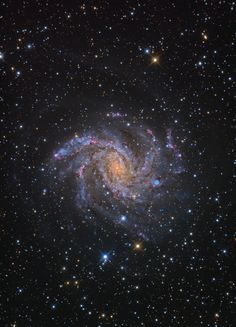 """Fireworks Galaxy (NGC 6946). On average there is one supernova in the Milky Way in a century. There have been at least nine in the Fireworks Galaxy in the last century. Plenty of fireworks for the opening ceremony of a heavenly Olympics. ©Mona Evans, """"Night Sky Olympics"""" http://www.bellaonline.com/articles/art41582.asp"""