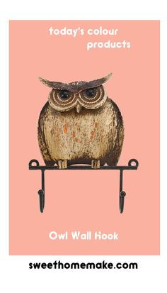 Farmhouse Metal Wall Hook with Owl Home Wall Decor at Today's Ideas-Products-Colour Nursery Wall Decor, Home Wall Decor, Owl Kitchen Decor, Local Furniture Stores, Decorative Wall Hooks, Owl House, Rustic Walls, Diy Home Decor Projects, Decorating Blogs