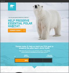 Polar  Not For Profit  Polar is designed as a not for profit campaign page. It can be used to encourage donations or to sign a petition. It could also be used as a travel template.