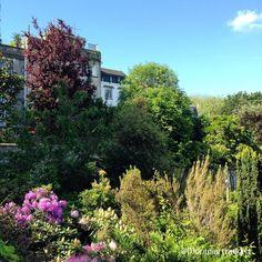 08. Un printemps à Montmartre, 75018