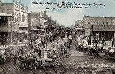 Childress TX Cotton Scene - Selling Cotton on Main Street  1910