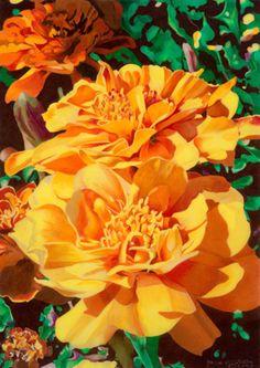 """""""Ruiodoso Marigolds""""Jane McCreary Colored Pencil"""