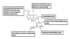 Patents on kratom alkaloids prove the federal government is lying to us.