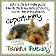 Happy Thursday Beautiful People!😊 Behind me is infinite power, before me is endless possibility, around me is boundless opportunity. Have a thankful Thursday my friends! 💗