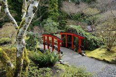 Winter in the Japanese Garden. #butchartgardens #winter #gardens #victoria #explorebc #japanesegarden