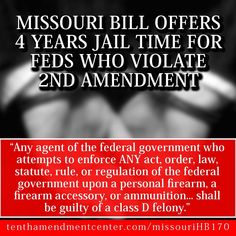Missouri bill offers 4 year jail time for feds who violate 2nd amendment | Anonymous ART of Revolution