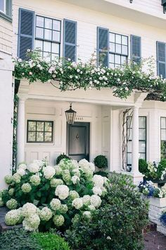 traditional white exterior with arbor, white climbing roses, and hydrangea, black shutters Hydrangea Landscaping, Hydrangea Garden, Front Yard Landscaping, Landscaping Ideas, White Hydrangeas, Pergola Ideas, Porch Ideas, Shade Landscaping, Gardens