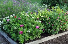 Plans for Cutting Gardens, Planting Map, Square Foot Gardening: Gardener's Supply