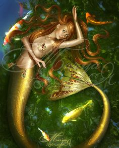 Golden fish by *mashamaklaut