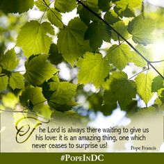The Lord is always waiting to give us His love. #PopeInDC