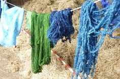 Medieval and Early Modern England was especially known for its green dyes. The dyers of Lincoln, a great cloth town in the high Middle Ages, produced the Lincoln green cloth associated with Robin Hood by dyeing wool with woad and then overdyeing it yellow with weld or dyer's greenweed (Genista tinctoria), also known as dyer's broom.[39]