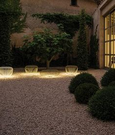 Tree Uplighting Ideas | Lighting Design Ideas | Pinterest ... on front walkway ideas, accessories ideas, october wedding decoration ideas, landscaping ideas, path paving ideas, diy walkway ideas, walkways and pathways ideas, diy painting ideas, rock painting ideas, solar light ideas, path garden ideas, solar powered ideas,